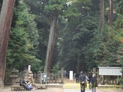 鹿島神宮051