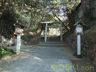 唐沢山神社11