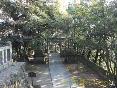 唐沢山神社58