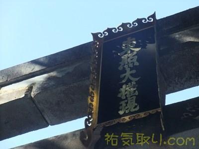 日光東照宮7