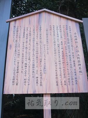 赤城神社(三夜沢町)4