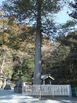 赤城神社(三夜沢町)9
