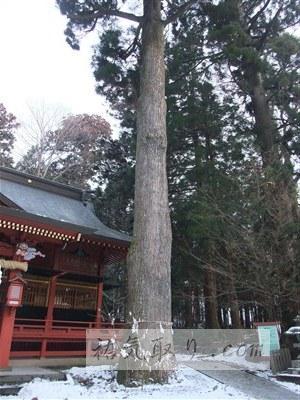東口富士浅間神社42