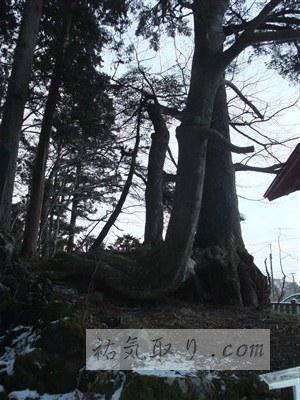 東口富士浅間神社7