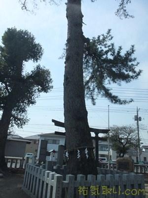 下野國一社八幡宮4