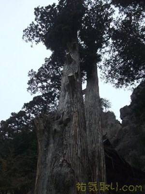 榛名神社65