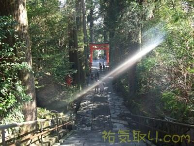 箱根神社64