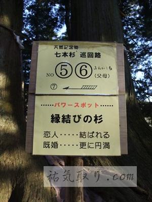 河口浅間神社35
