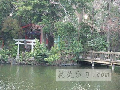 井の頭公園39