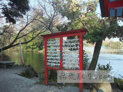 井の頭公園11