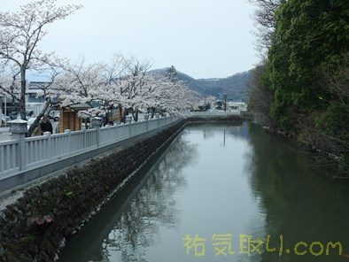 武田神社15