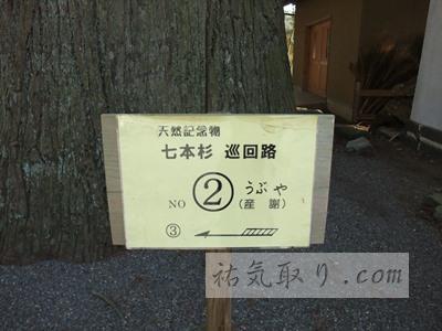 河口浅間神社29