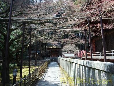 北口本宮浅間神社45