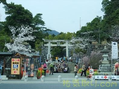 武田神社10