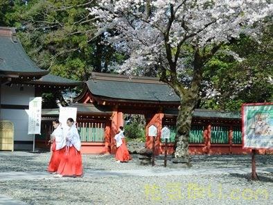 駿河國一之宮富士山本宮浅間神社32