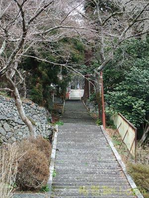 金櫻神社6