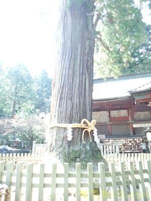 北口本宮浅間神社32