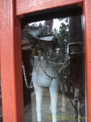 北口本宮浅間神社98