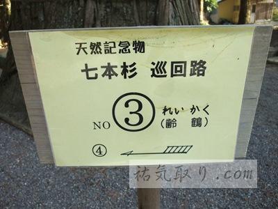 河口浅間神社31