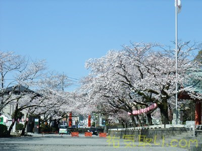 駿河國一之宮富士山本宮浅間神社72