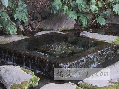 井の頭公園51