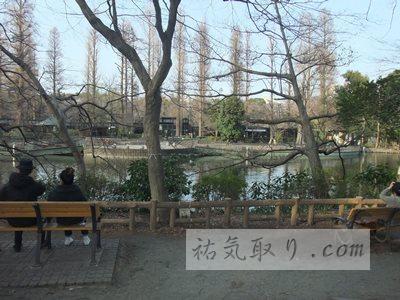 井の頭公園25