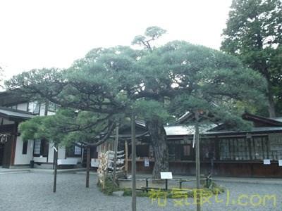 甲斐國一宮浅間神社12