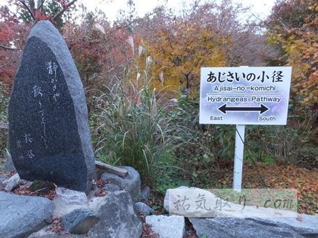 石都々古和氣神社43