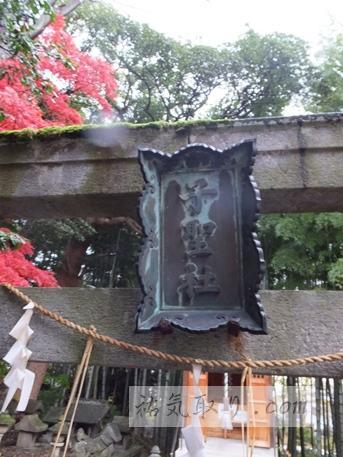 天津神社43