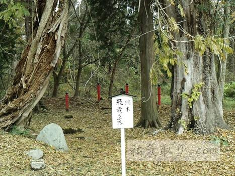 isasumi-jinja34