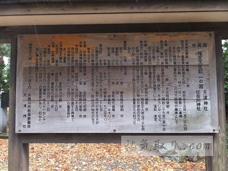 天津神社12