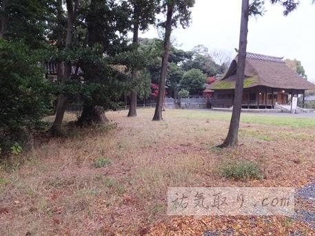 天津神社20