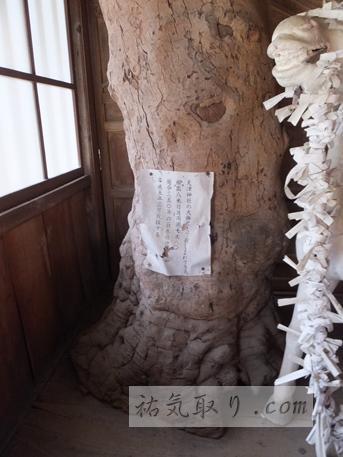 天津神社30