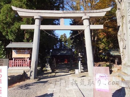 八槻都々古別神社7