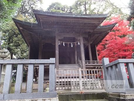 天津神社37
