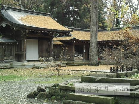 isasumi-jinja49