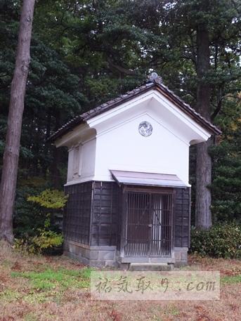 天津神社33