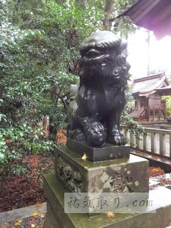 弥彦神社6