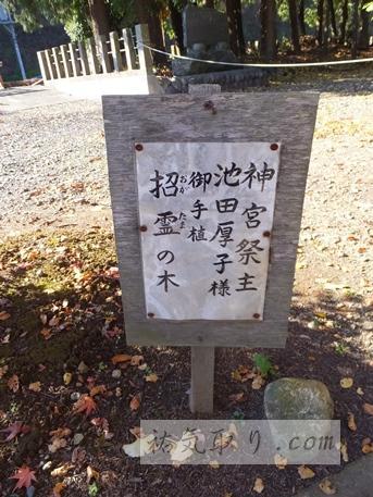 八槻都々古別神社10