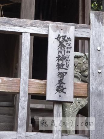 天津神社35