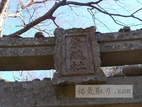 対馬海神神社51
