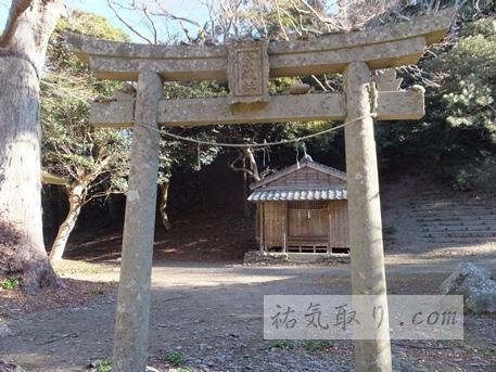 対馬海神神社50