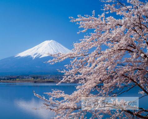 2泊3日 静岡・山梨・長野 一宮神社巡礼&お水取りの旅