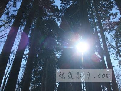 戸隠神社24
