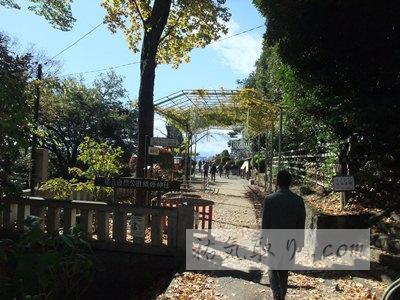 織姫神社1