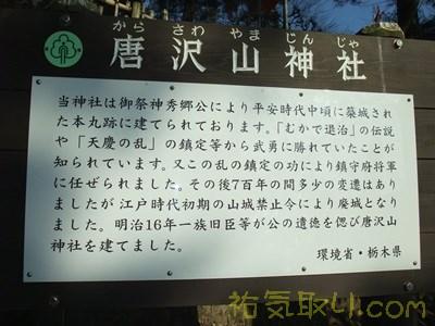唐沢山神社31
