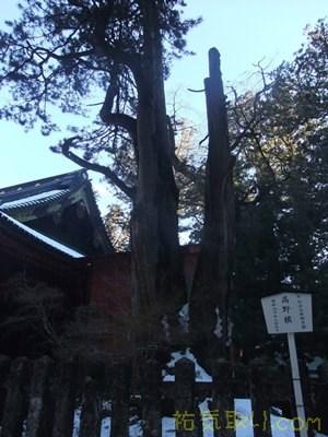 日光二荒山神社51