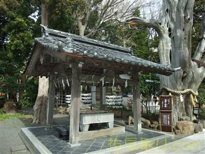 白濱神社19