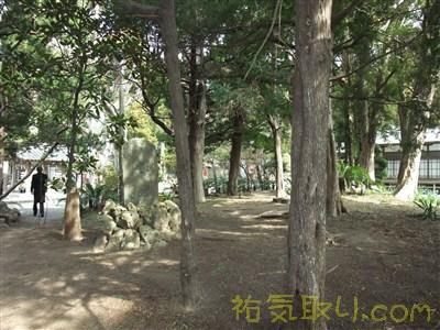 白濱神社8