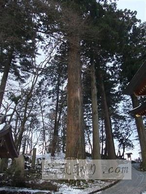 東口富士浅間神社43